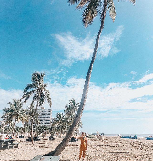 b e a c h  d a z e 🌴✨✨ . . . . #beachbabe #summer19 #summerdaze #florida #palmtree #palmbffs #dallasblogger #ftlauderdalebeach #ftlauderdale #traveltheus #travelflorida #traveldiaries #traveler #seabreeze #femmetravel #dametraveler #shopthemint #fstylist #summerstyle #traveltipsandtricks #condenast #girlsvacay #vacayvibes #travelinstyle #bahiamar