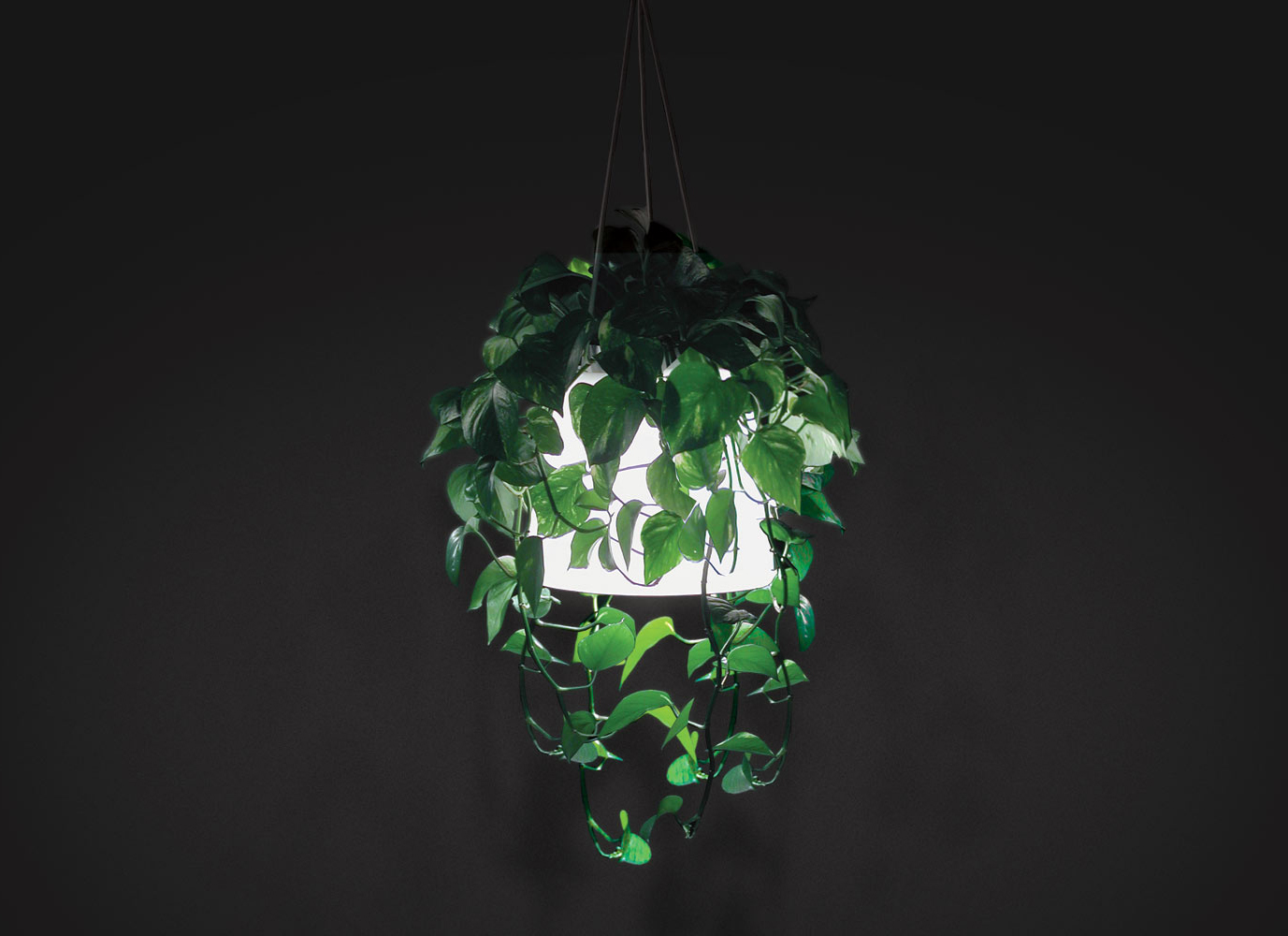 """Flora   Client: Ikea 2004  This concept lamp by Clabots won a design competition for Ikea at the University of Art and Design in Helsinki, and was selected for production. It combined a hanging planter and a light. The branches and leaves of the plant hung over the shade, and the shadows created by the leaves gave the light an organic element - something artificial light typically lacks. Because of its dual use, the lamp was invisible beneath the foliage when not in use.  Award:  Ikea Design Competition Winner 2004   Exhibition:  AmDC show """"Outside of Sorts"""" 2008"""
