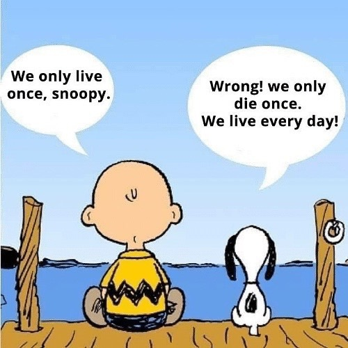 Snoopy is so smart. Our time here is limited but we have this day. I'm taking today to sit still for a minute and not stress about catching up... because there is no such thing. There is simply just living. 🌟 Even though I'm unpacking, doing laundry, and chauffeuring the teenager I'm still dreaming, still smiling and still so excited about being here. Thank you for smiling back— . . . . #lifeisgood #snoopy #happymonday #smile #writerscommunity #mondaymotivation #teen #laundryisexciting #summer #inspirationalquotes