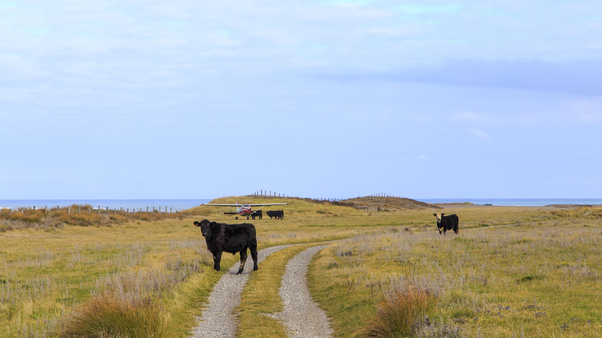 Rural road block.