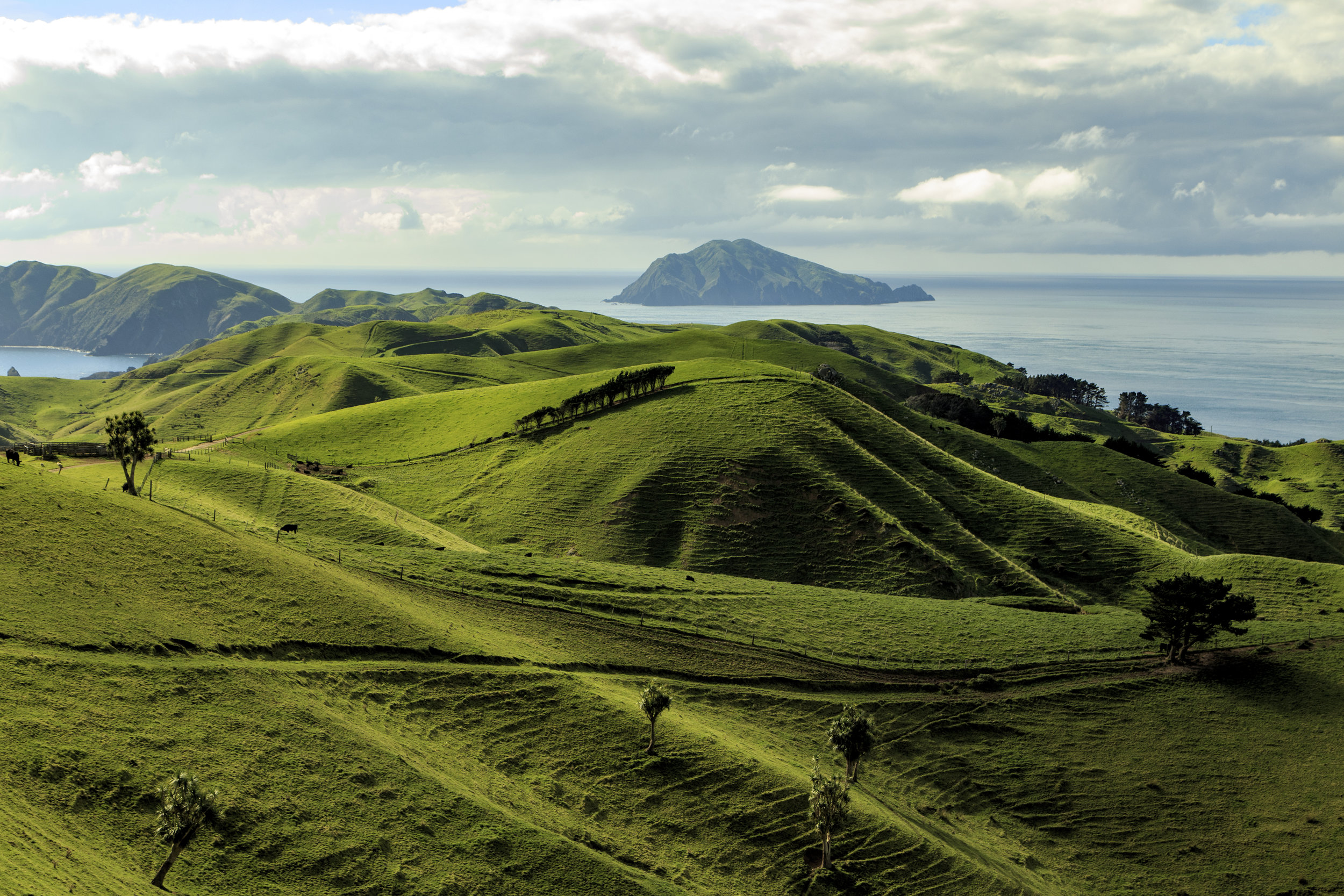 Lush hills and sweeping landscapes