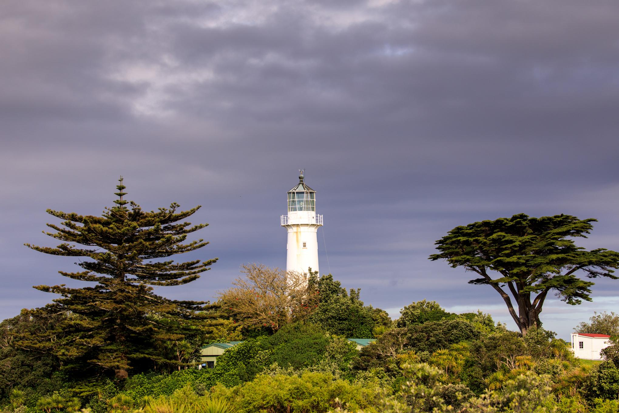 Lighthouse - Tiri Tiri Matangi Island