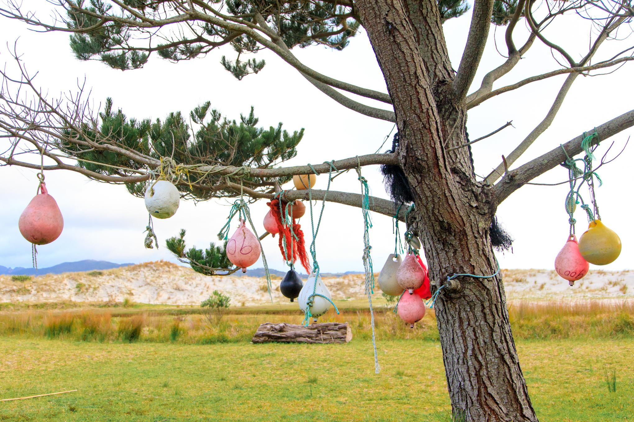 Shoal Bay Christmas Tree