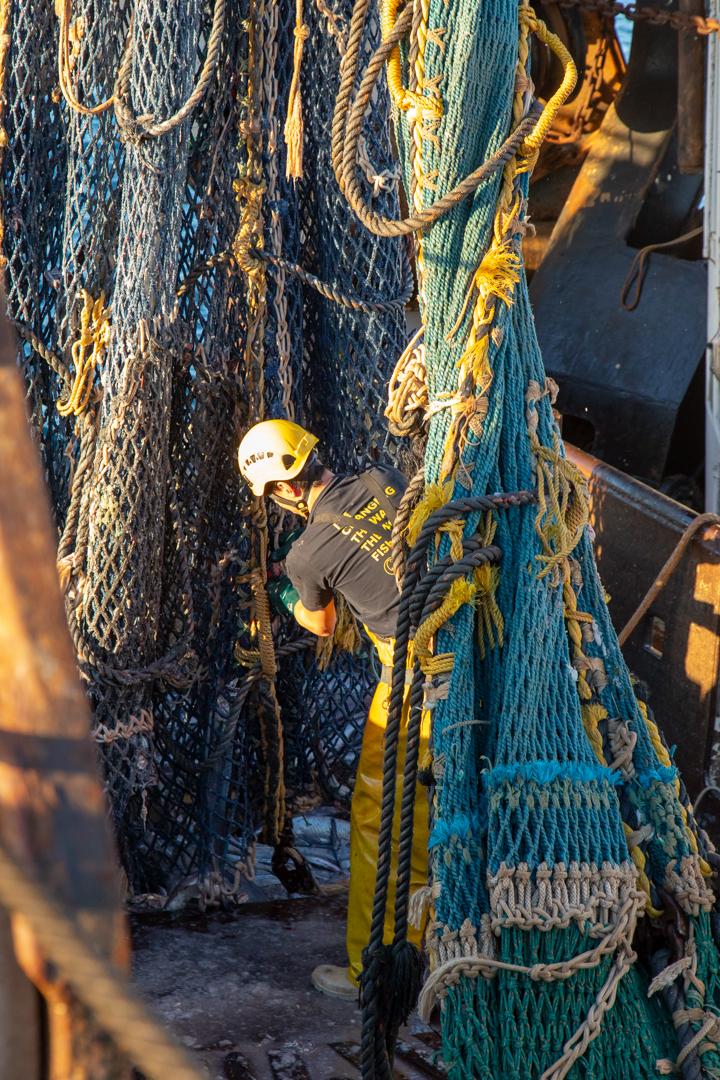 Tamzin Henderson - Otakou Sealord Cook Strait 2018 working 4.jpg