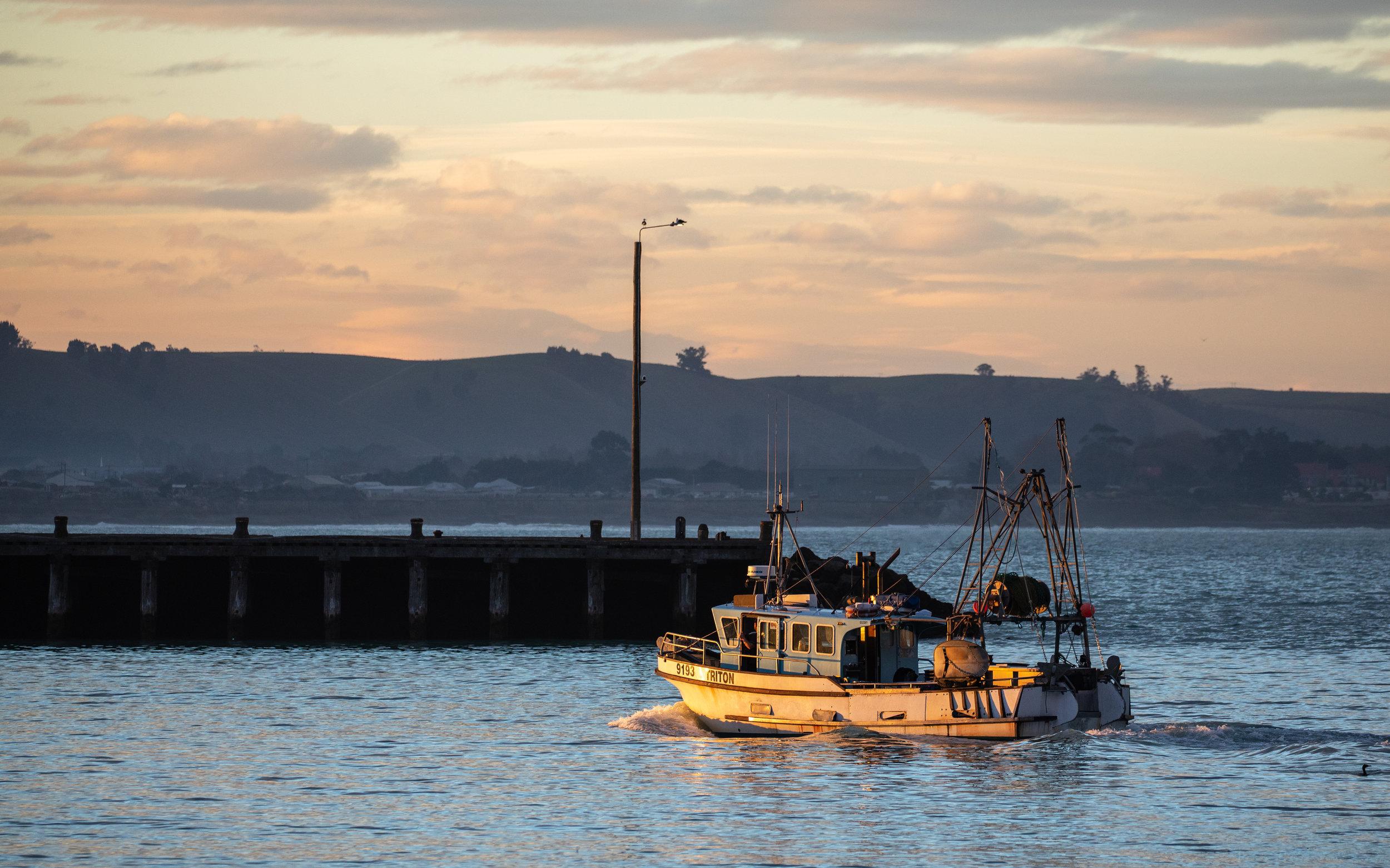Fishing vessel arriving home in Oamaru