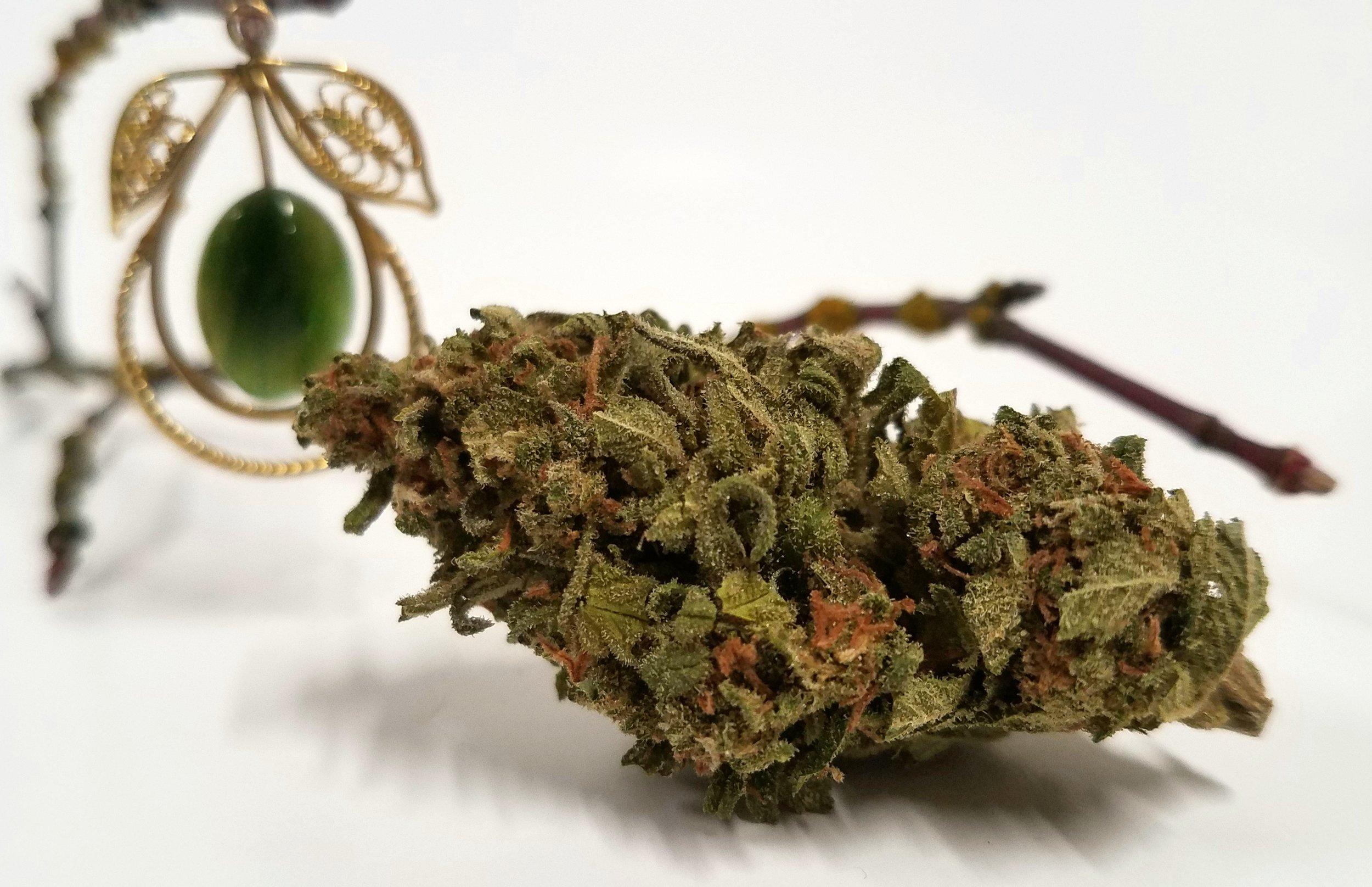 J1 grown by Cascade Valley Cannabis
