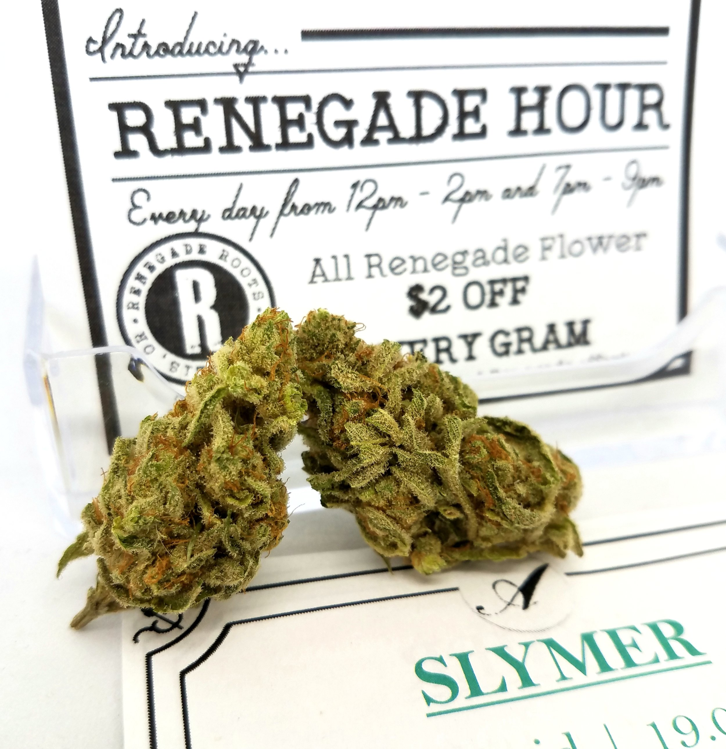 Slymer grown by Renegade Roots
