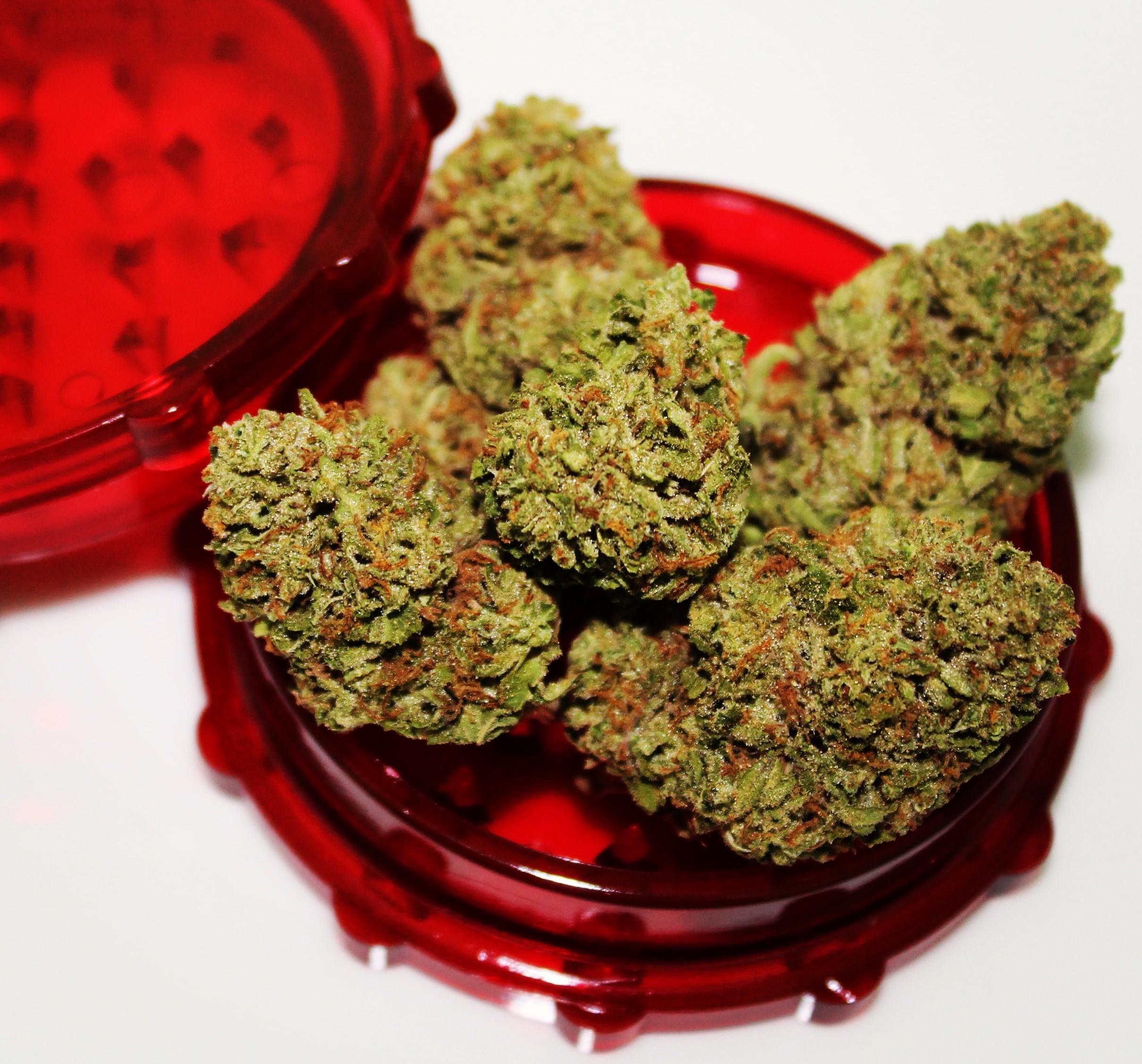 Cherry OG grown by Cascade Valley Cannabis