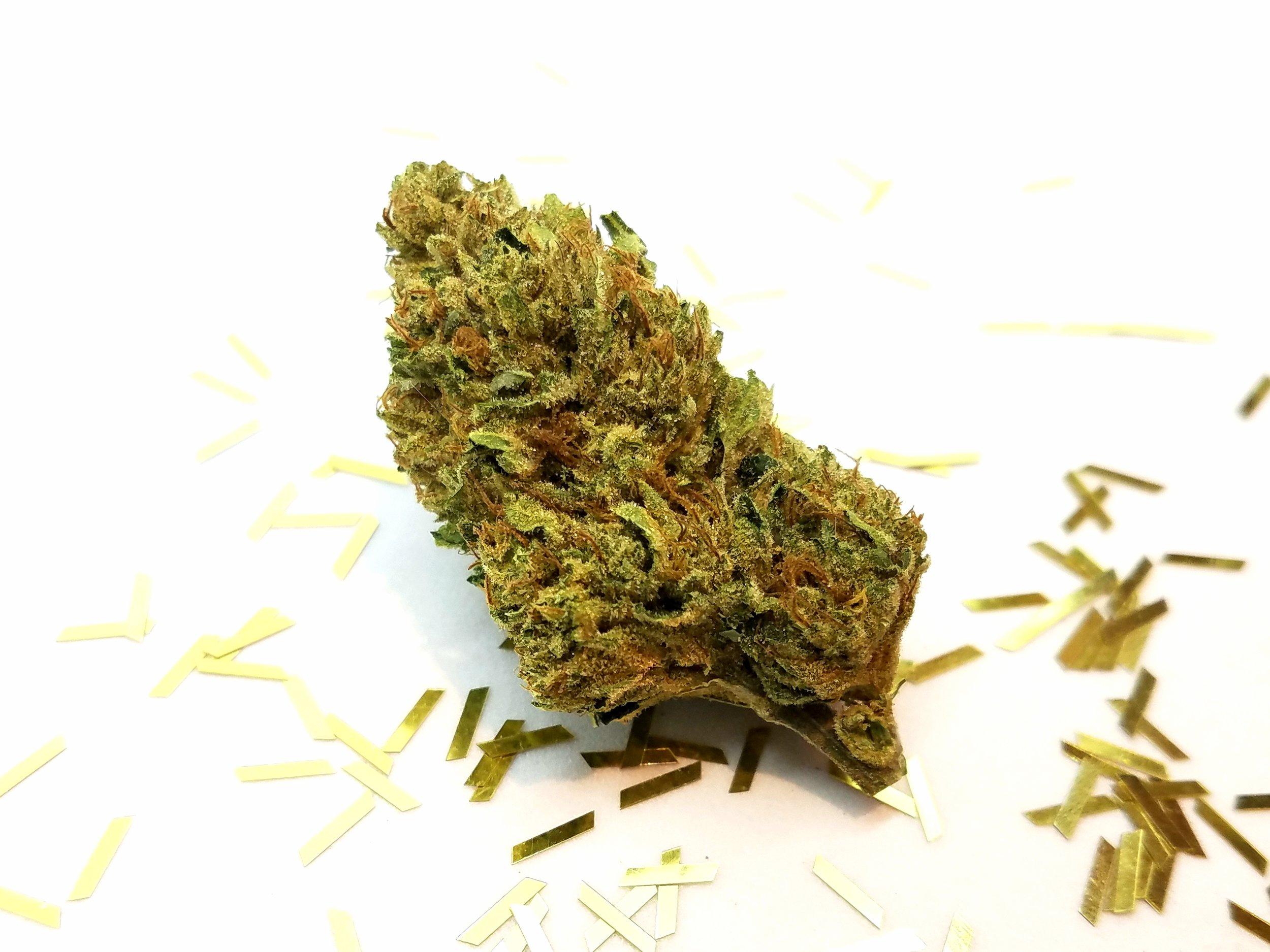 Golden Lemons grown by Cascade Valley Cannabis