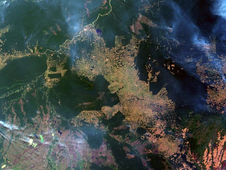The Extinction of Deforestation in the Brazilian Amazon: Is it Possible?
