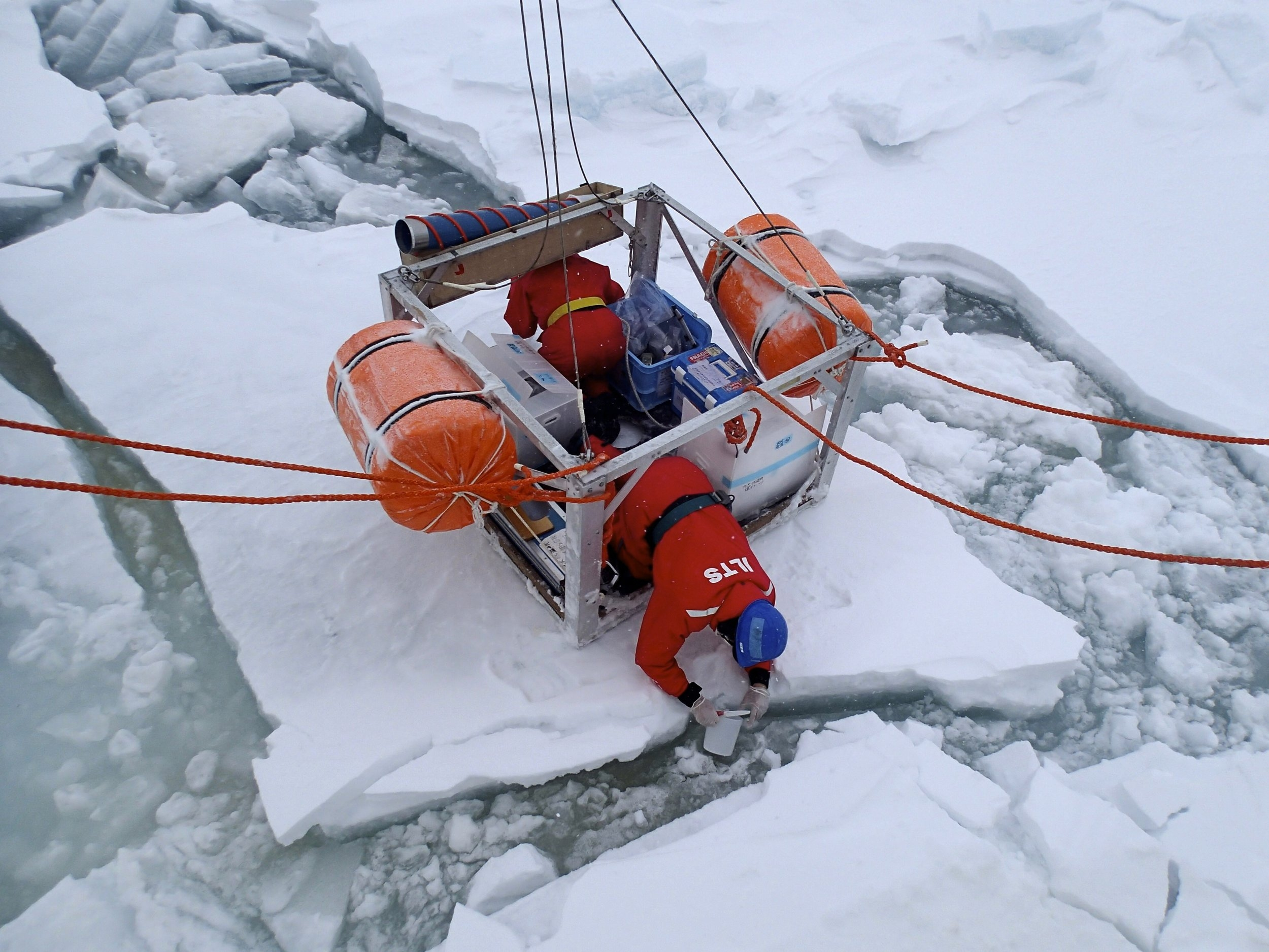 Biogeochemical Exchange Processes at Sea-Ice Interfaces (BEPSII)