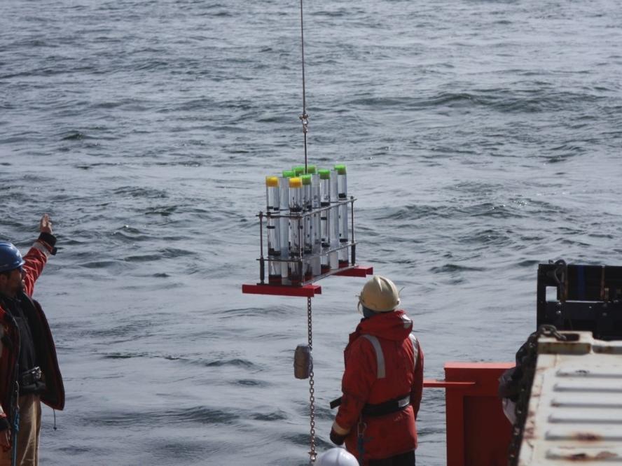 Floating Sediment Trap Array