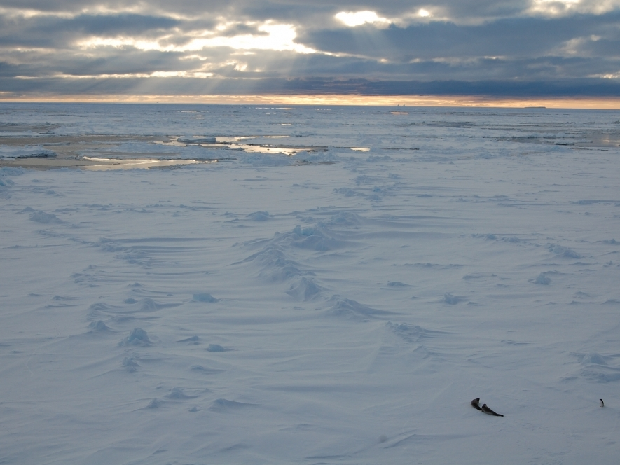 Pack Ice North of Amundsen Sea Polynya