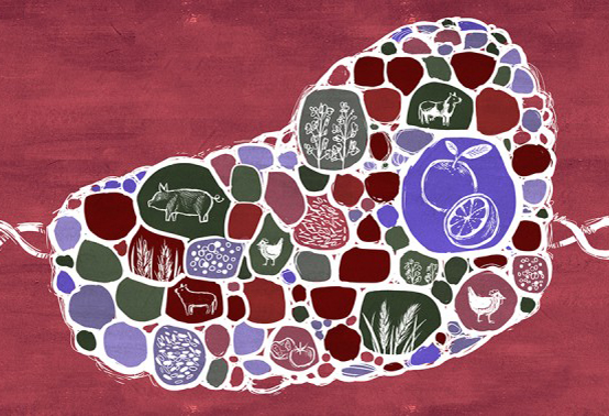 Illustration by Kelsey King; reused with permission from    Ensia       Gene Editing the Food System