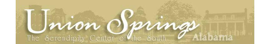 City-of-Union-Springs.jpg