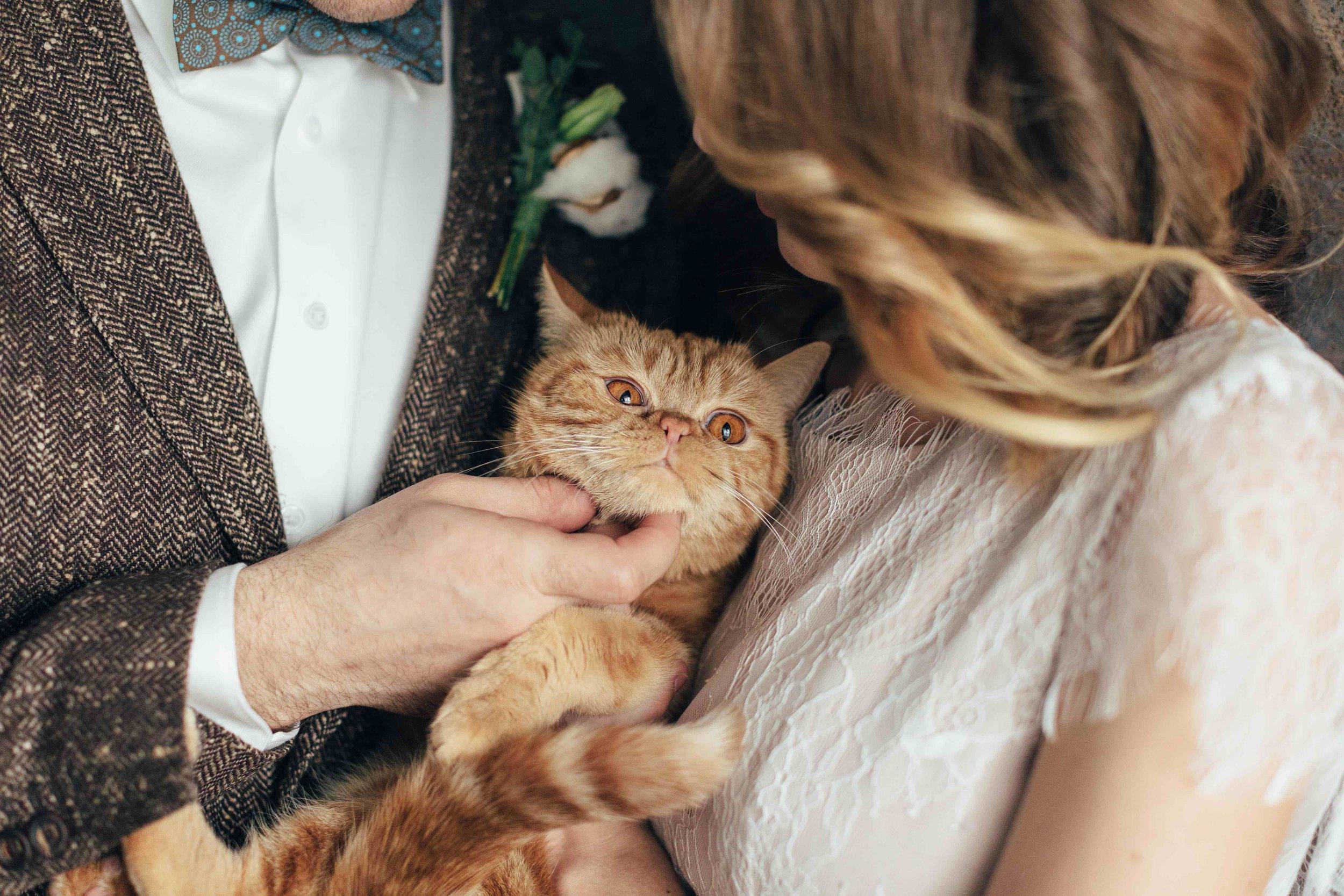 Hochzeitskleider.jpg