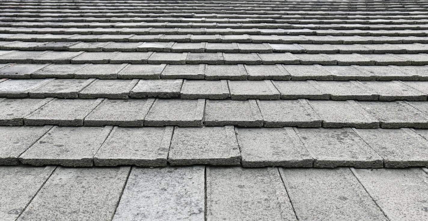 Concrete Tile Roof.jpg