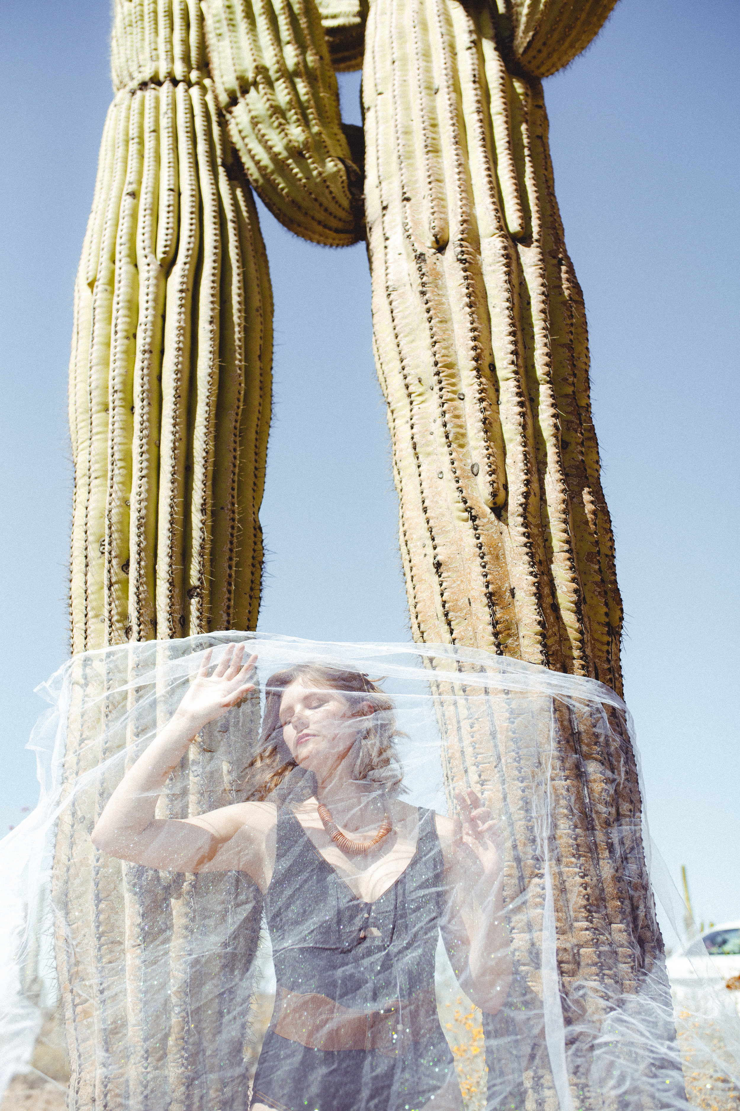 A Planet Called Earth - Saguaro National Park, ArizonaPhotos by: Shelly DuncanNecklace by: Odyssey and Oddities
