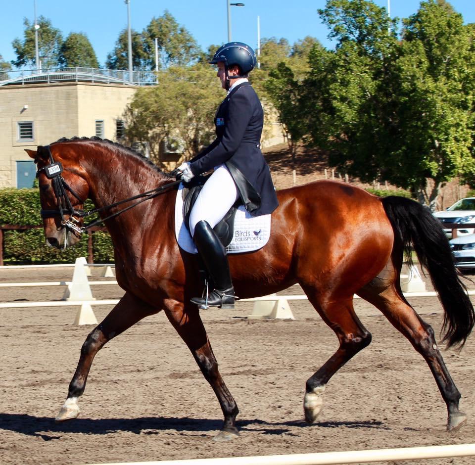 Denise Rogan - Grand Prix Dressage Rider
