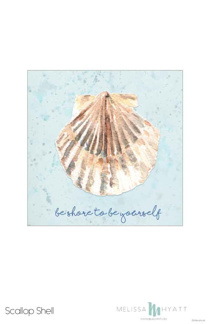 MELISSAHYATT_Scallop-Shell.jpg