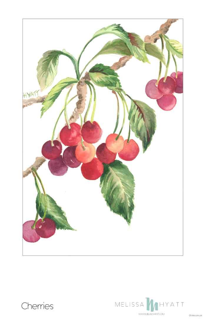 MELISSAHYATT_Cherries.jpg