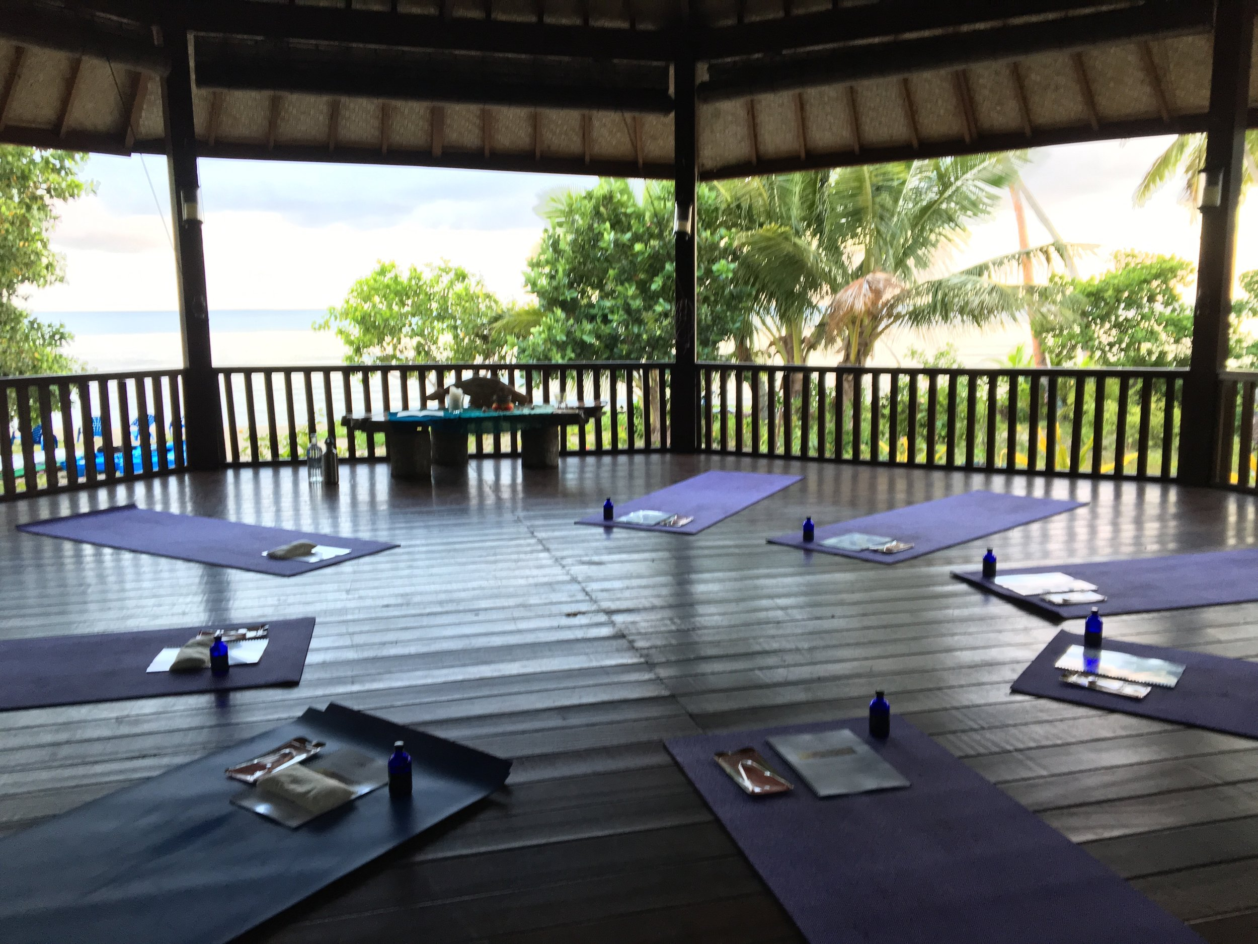 view from yoga room.jpg