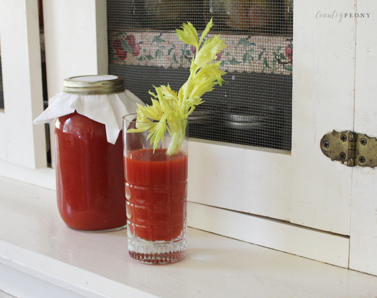 Homemade and Healthy Vegetable Juice