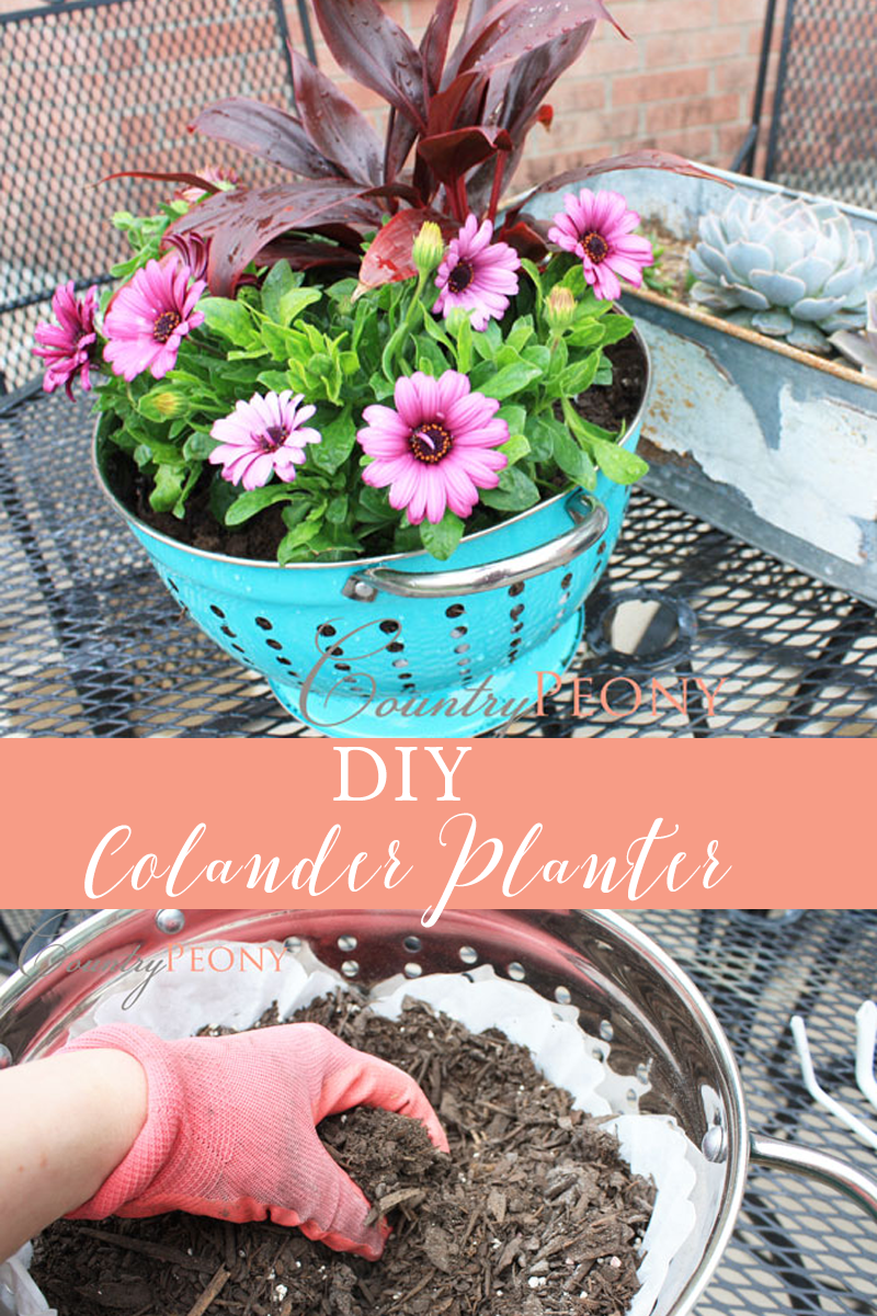 DIY Colander Planter.png