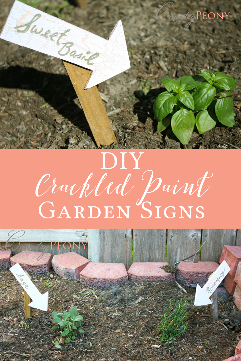 DIY Crackled Paint Garden Signs