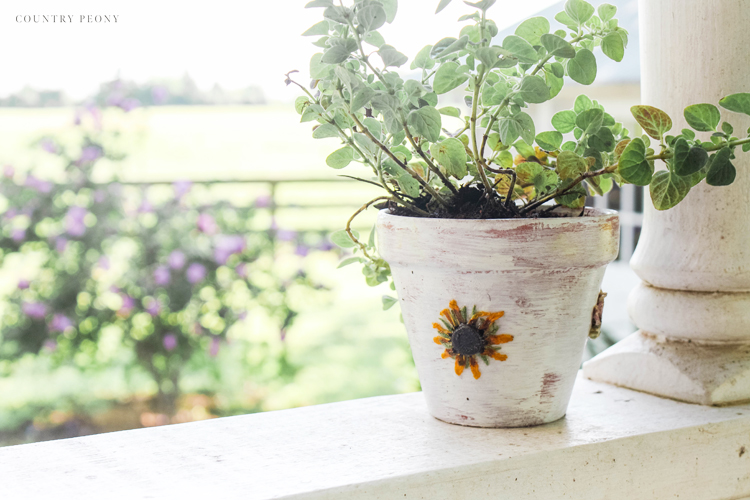 DIY Pressed Flower Terra Cotta Pots