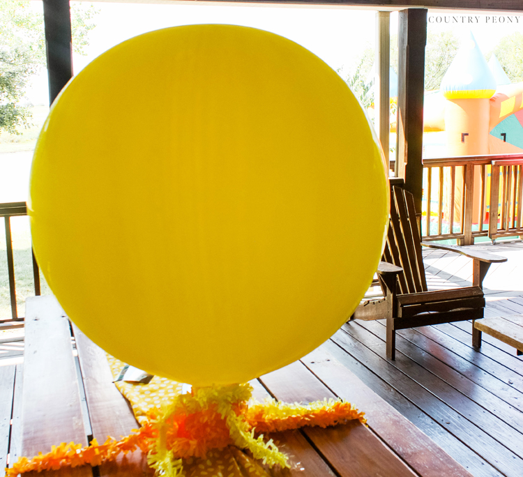 You Are My Sunshine Boy's First Birthday Party - Country Peony