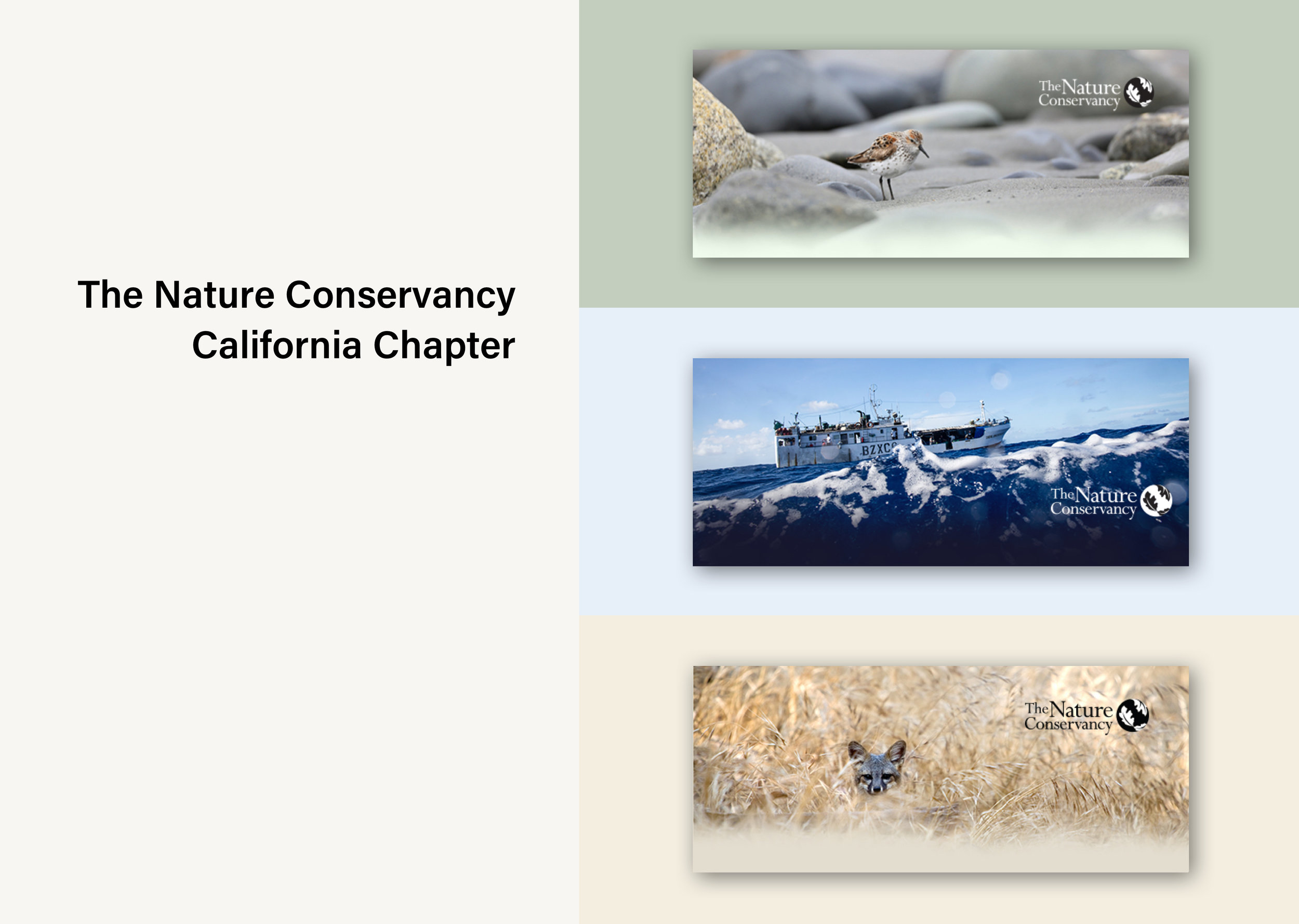 The Nature Conservancy in California Responsive Email Template - Implementing brand guidelines in marketing campaign emailsEmail Template | Photography Direction | Responsive