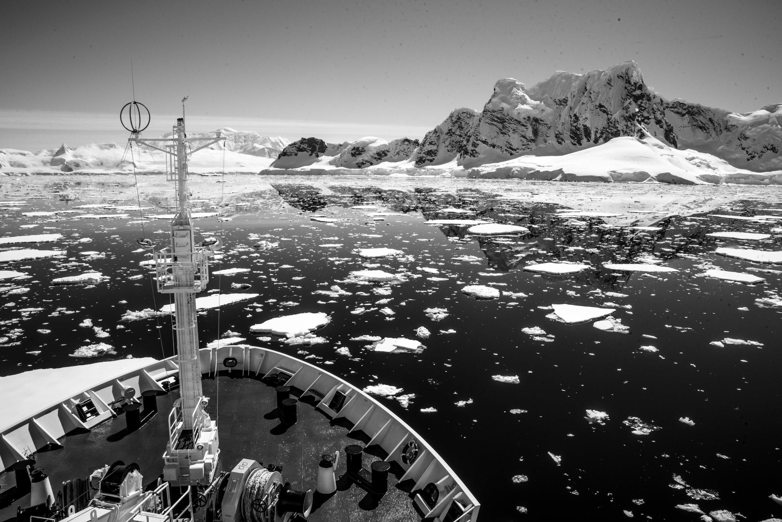 Antarctica-303.jpg