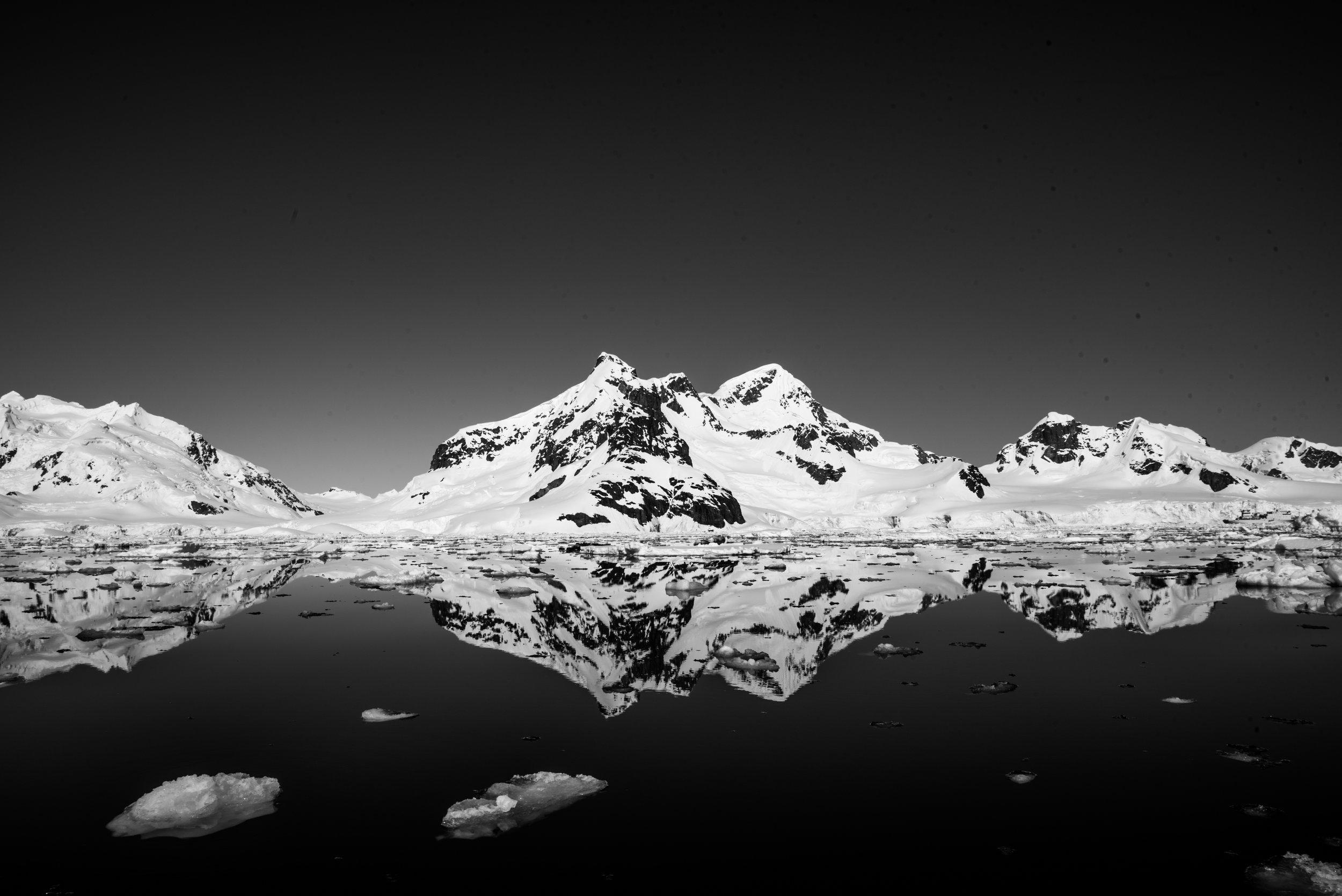 Antarctica-424.jpg