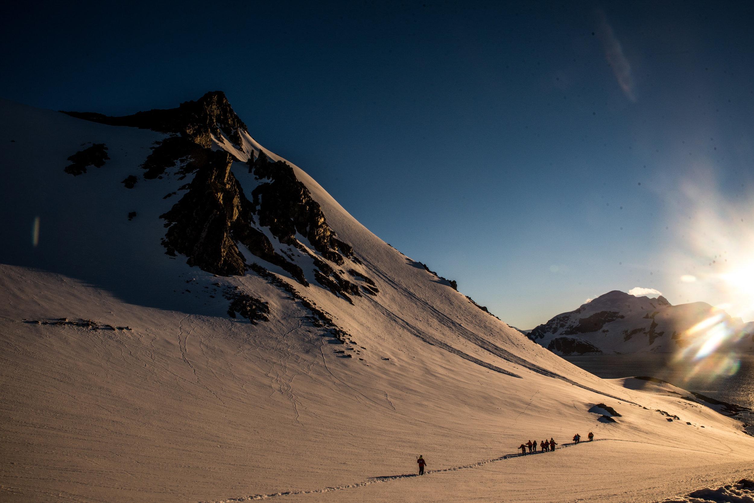 Antarctica-416.jpg