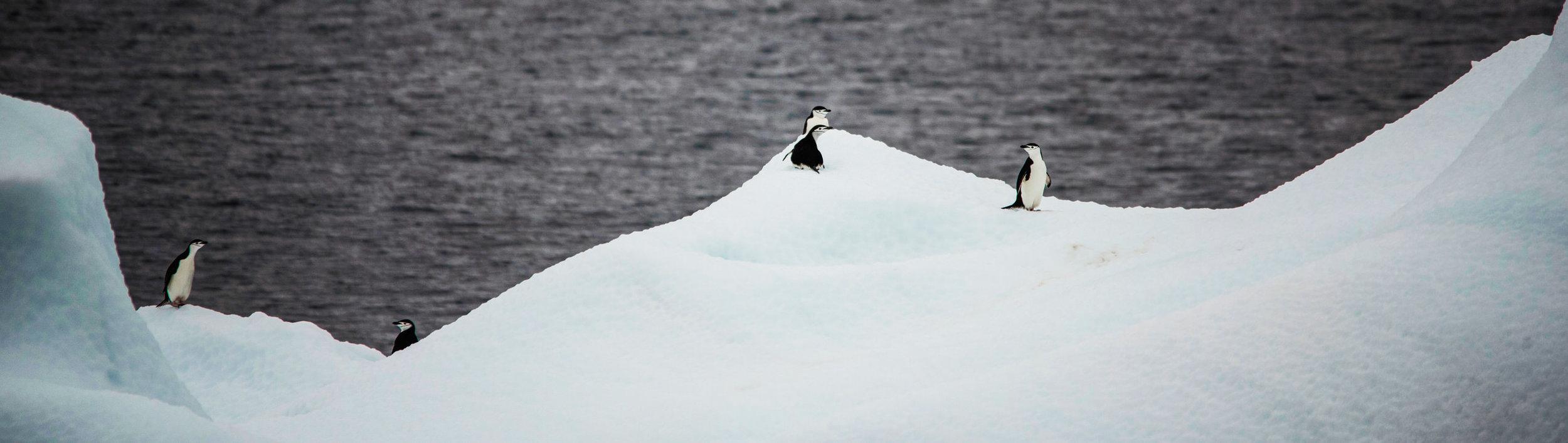 KathleenHertelPhotography-AntarcticaLandscapes-115.JPG