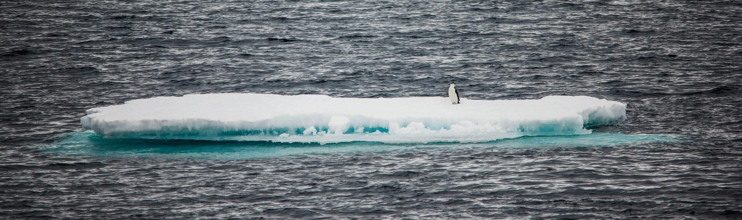 KathleenHertelPhotography-AntarcticaLandscapes-135.JPG