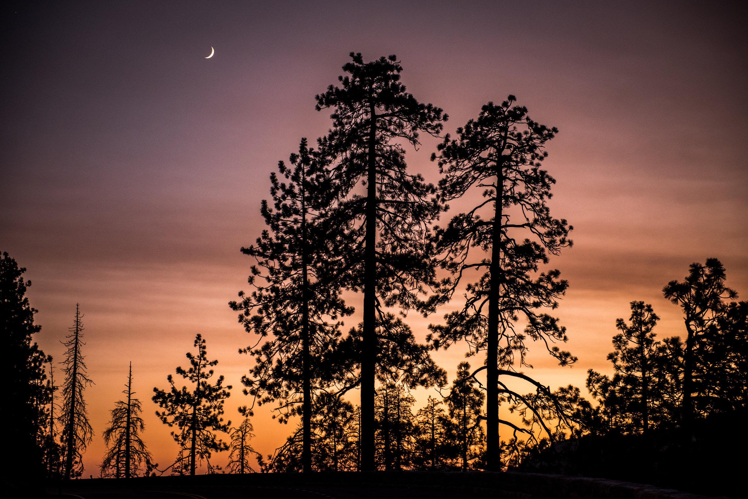 Yosemite2018-9.jpg