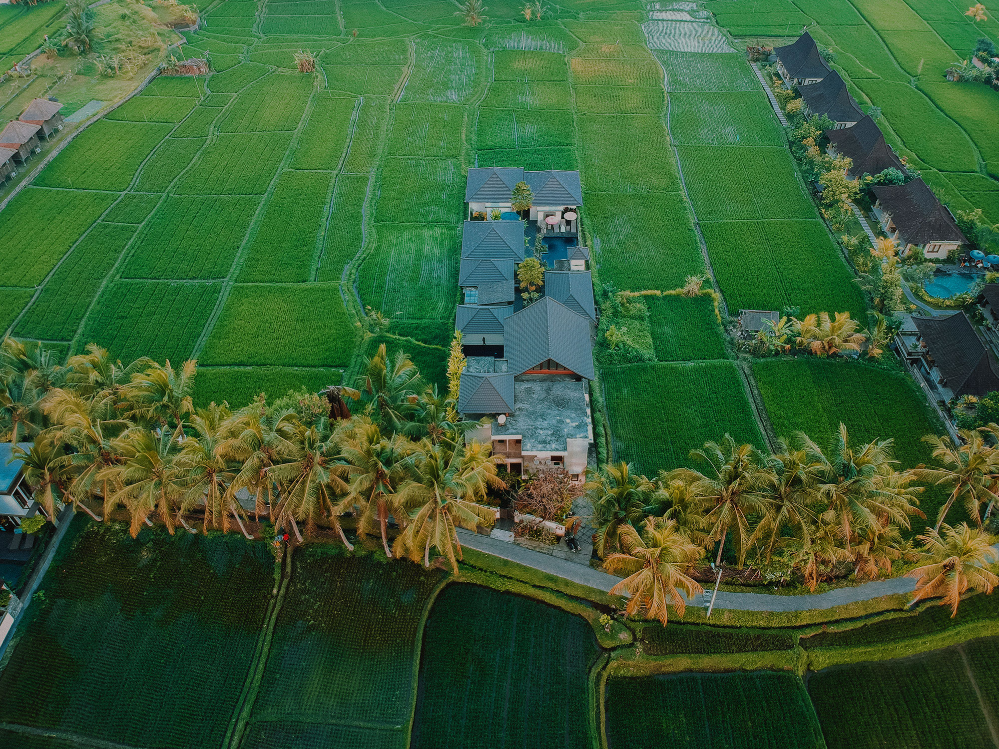 Solo Villas and Retreat -