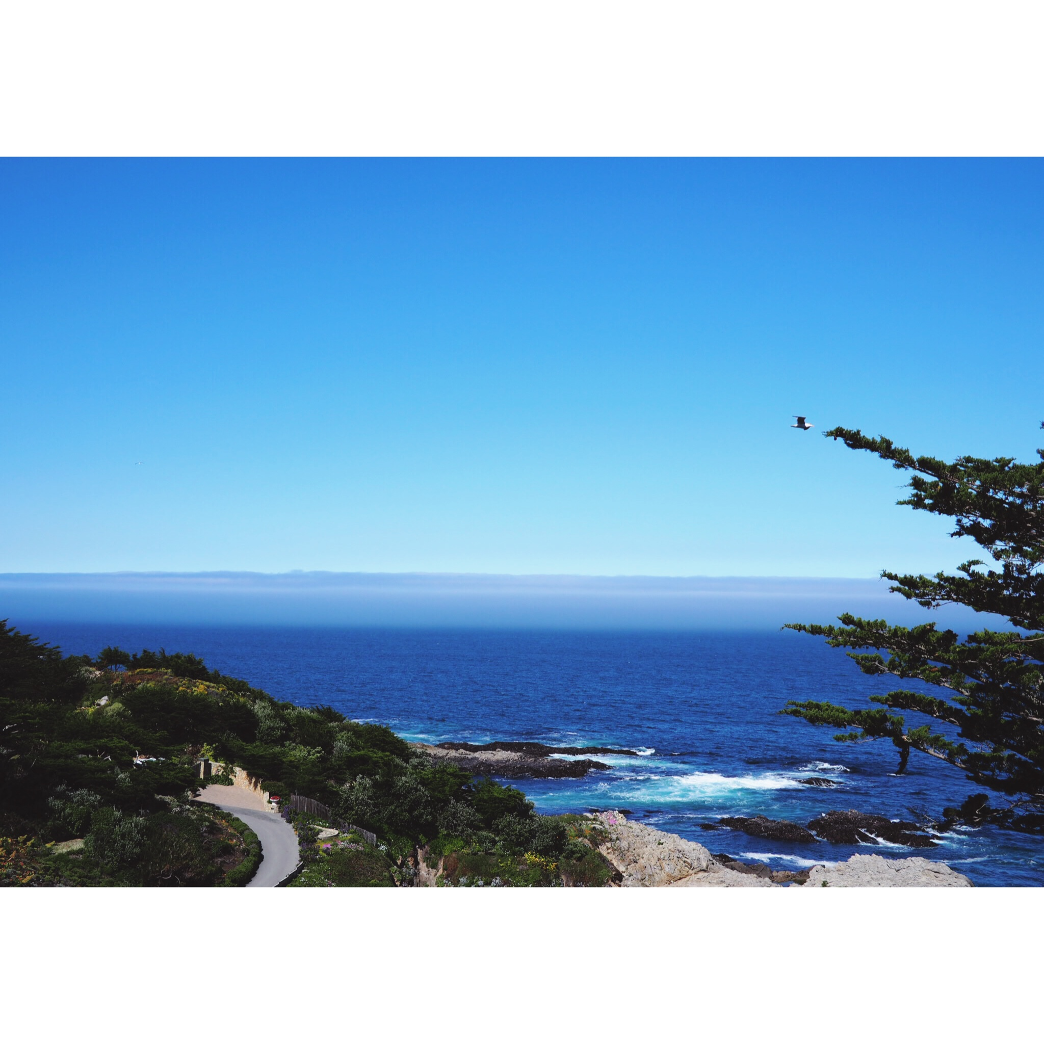 Californian Road Trip