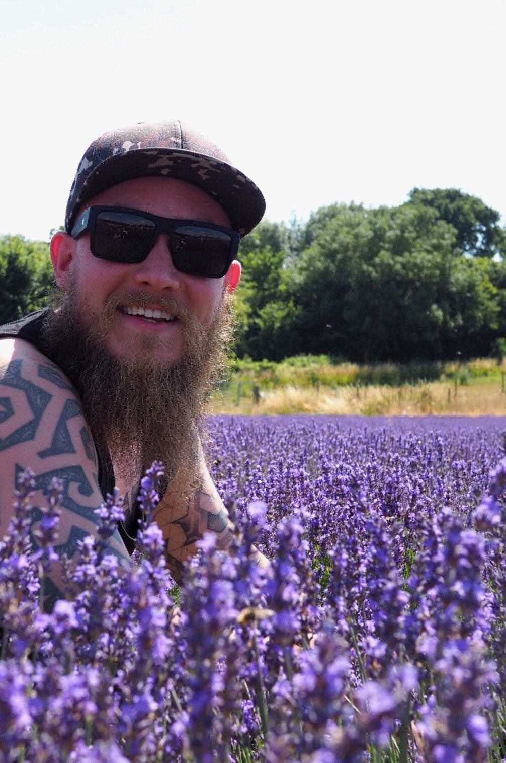 Lordington Lavender farm Sussex