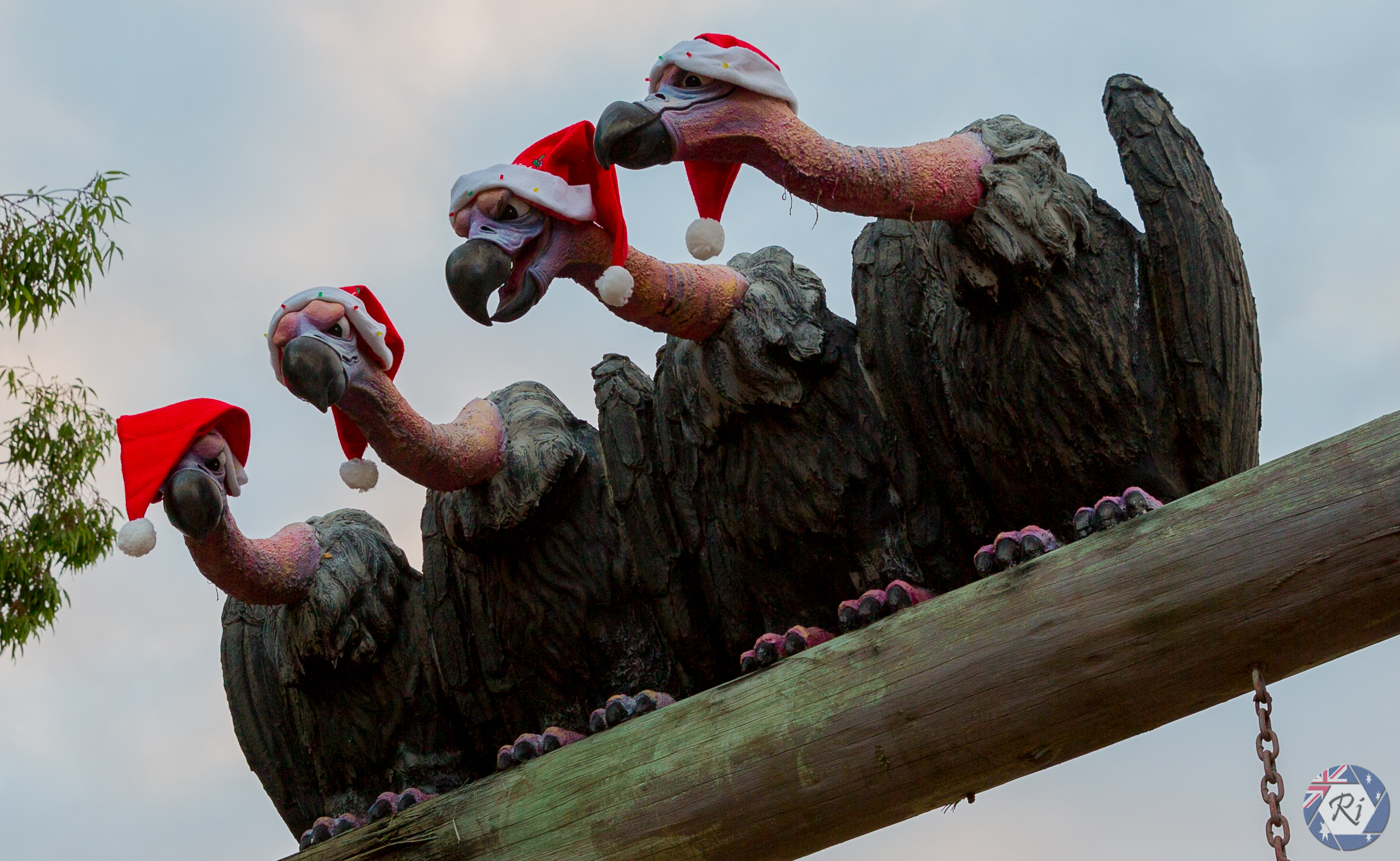 Christmas Vultures