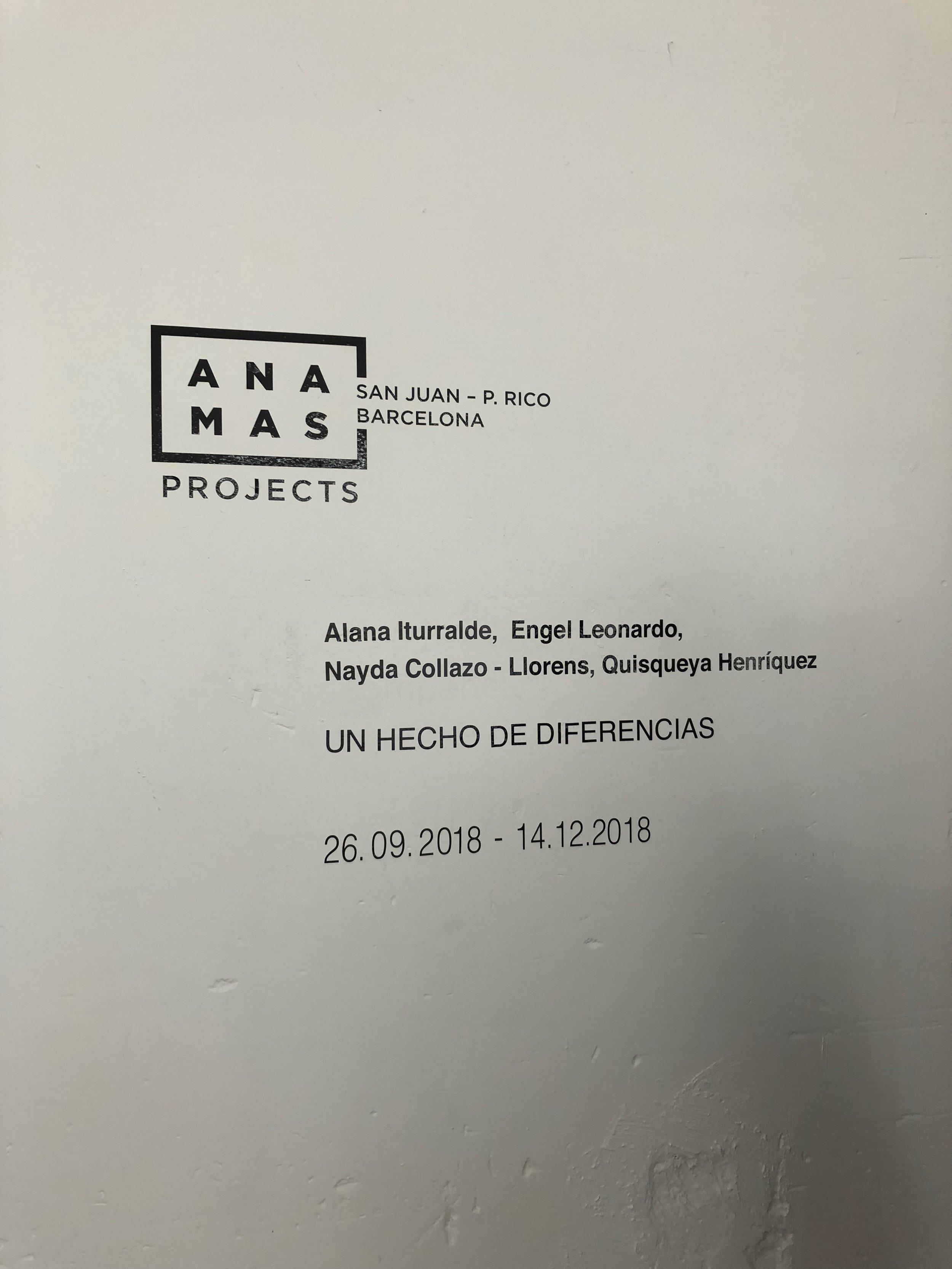 @anamasprojects
