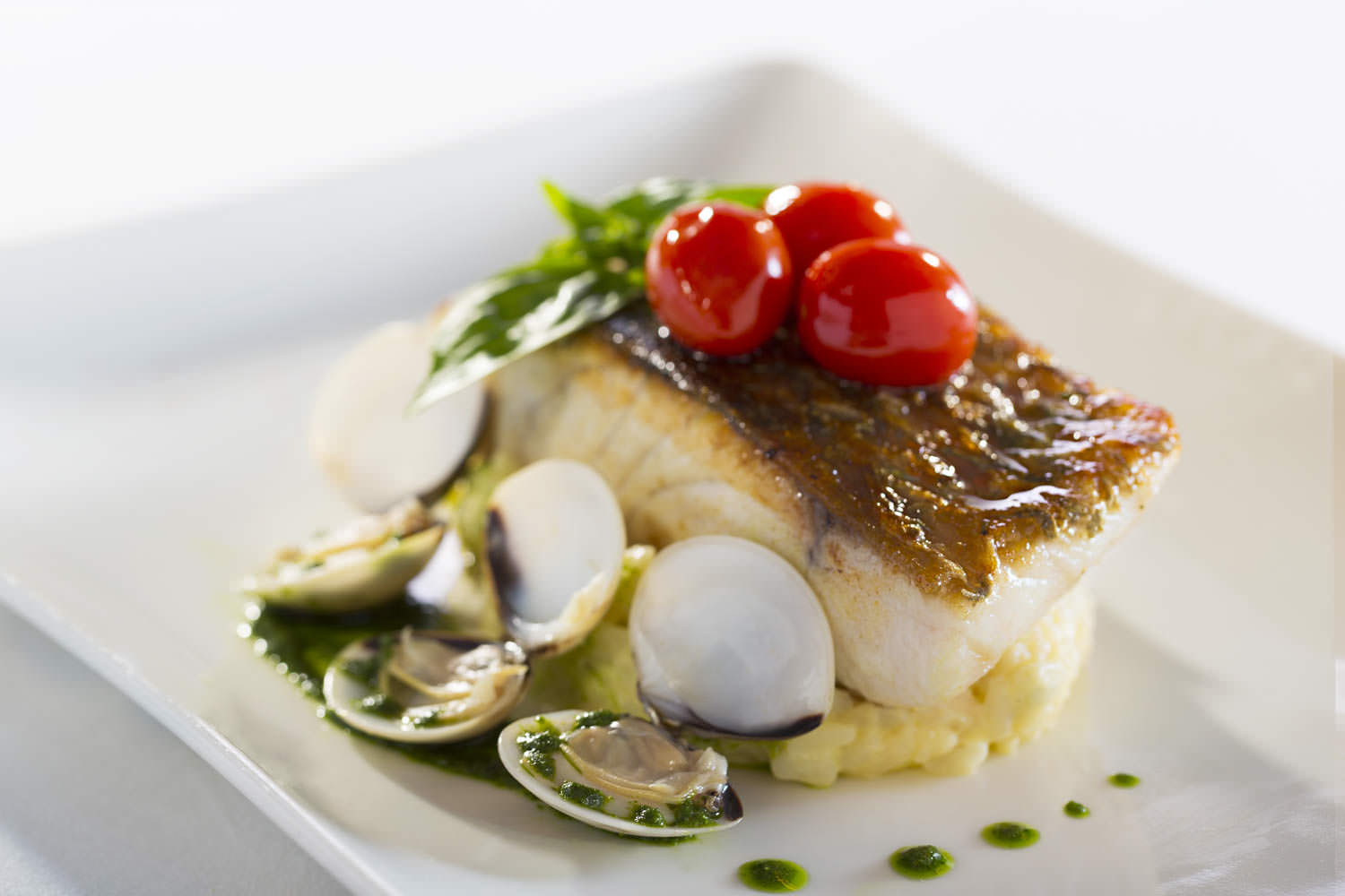Pan fried Sea Bass with Clam on pesto sauce in Hilton Opera Hanoi | Vietnam Food Photography | Francis Roux Commercial Photographer