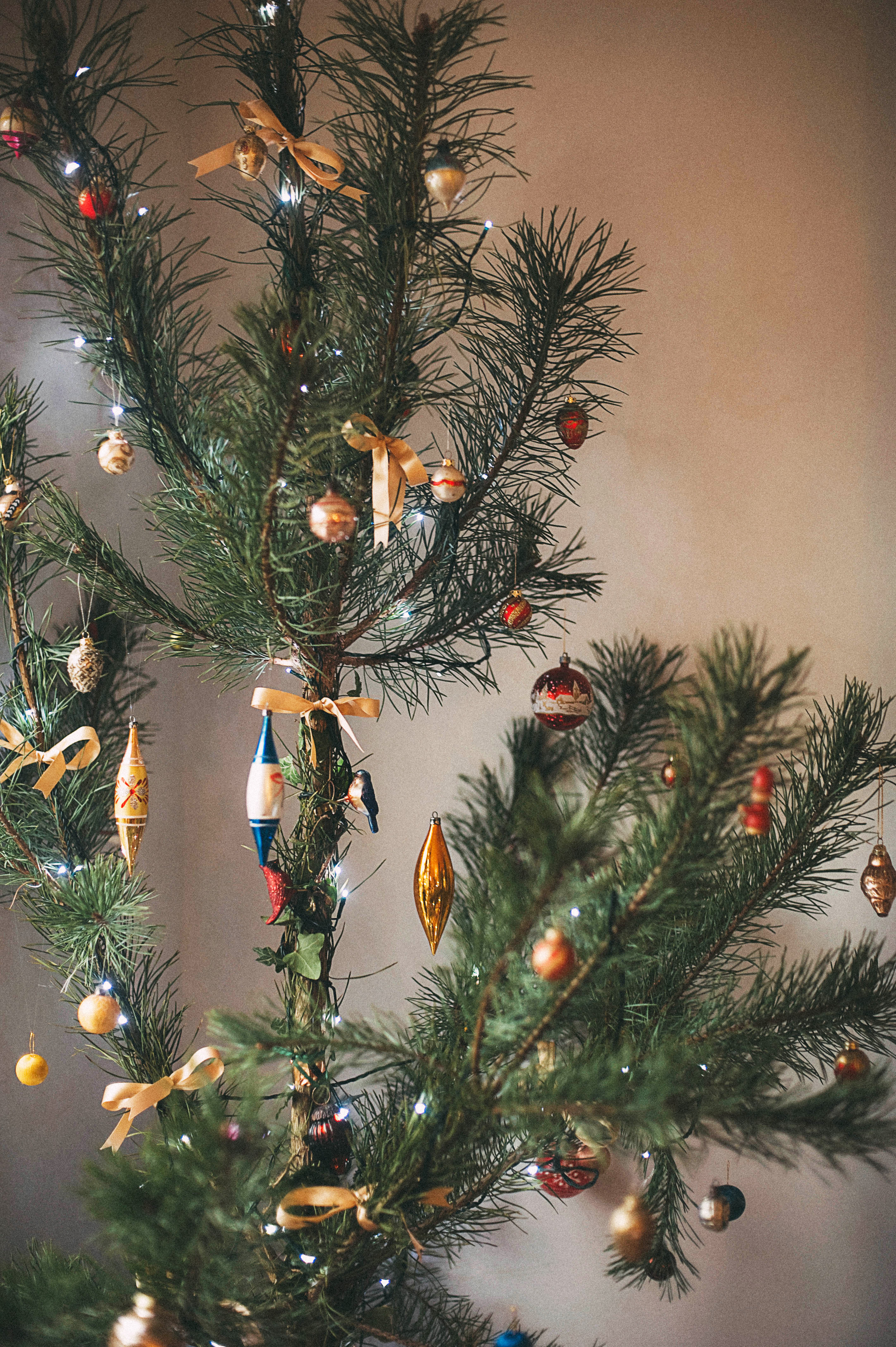 Last years tree captured beautifully by  Lulu