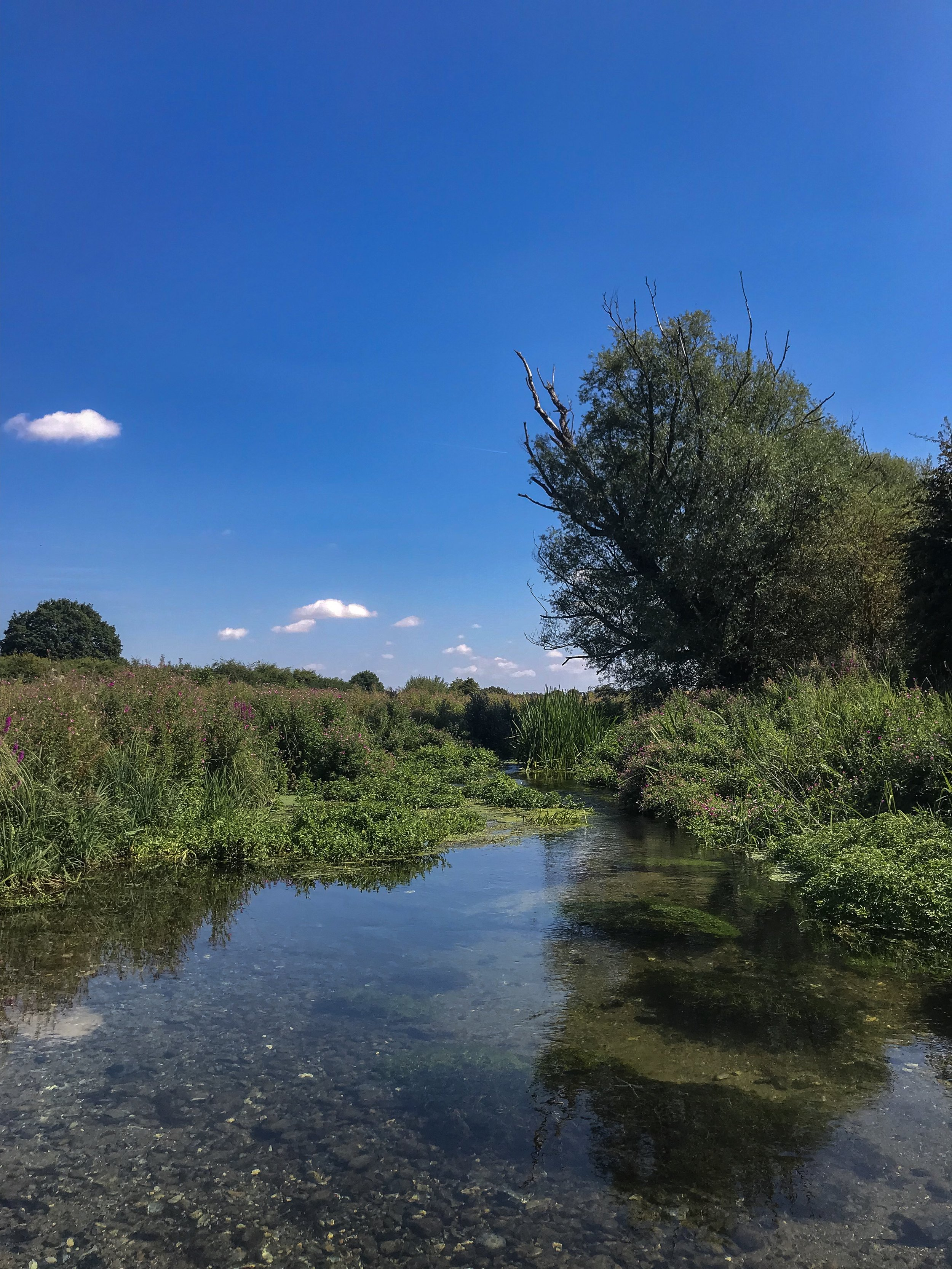 The river nar in castle acre