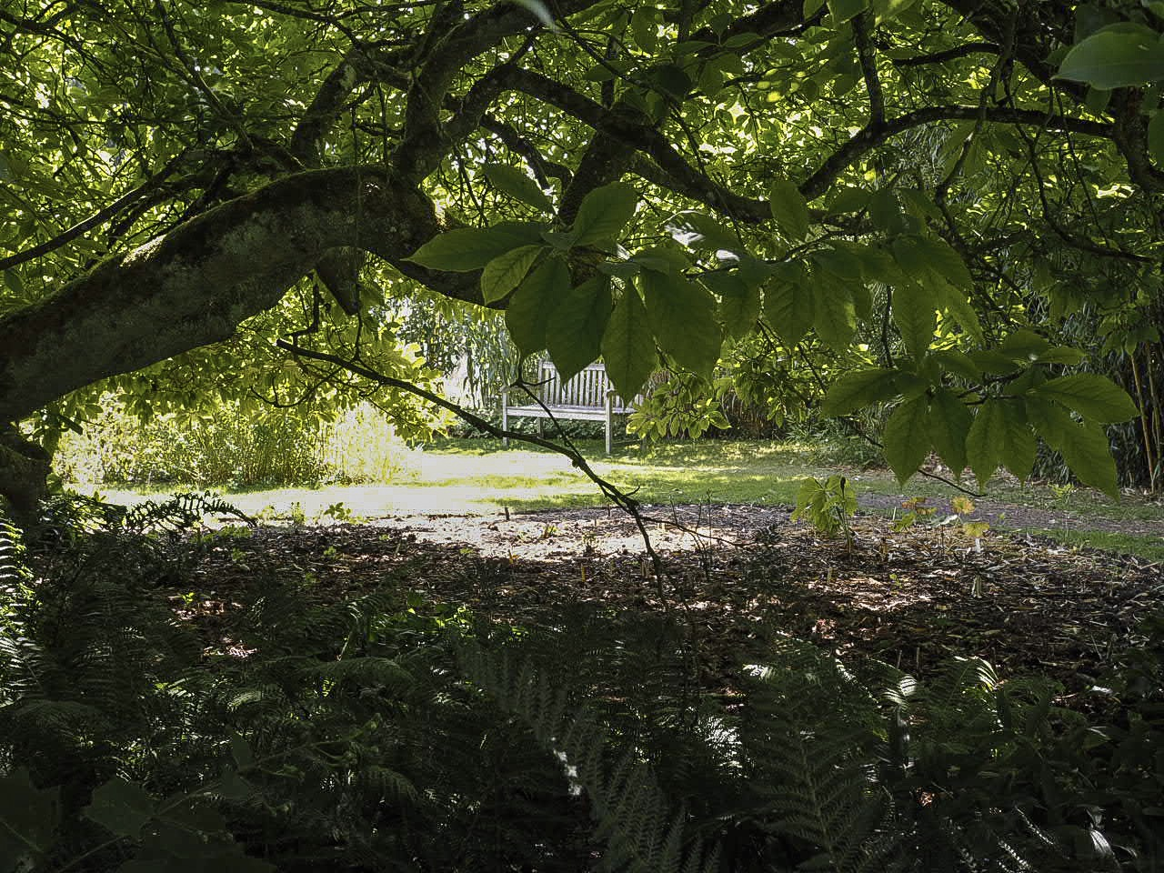 The perfect place to stop and pause in west acre gardens