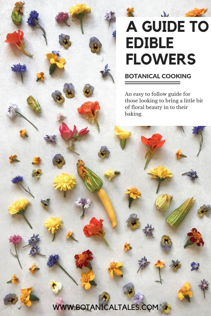 A guide to edibelflowers.jpg