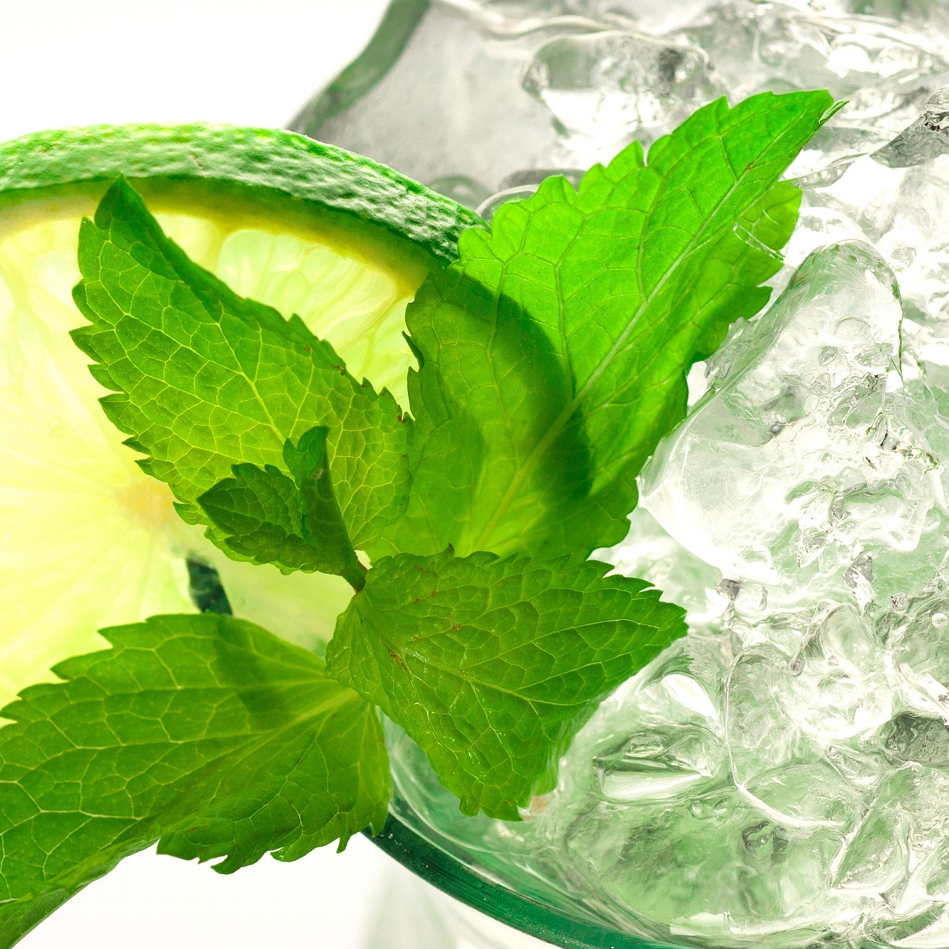 Our Fresh Mint Mojito goes down for a treat