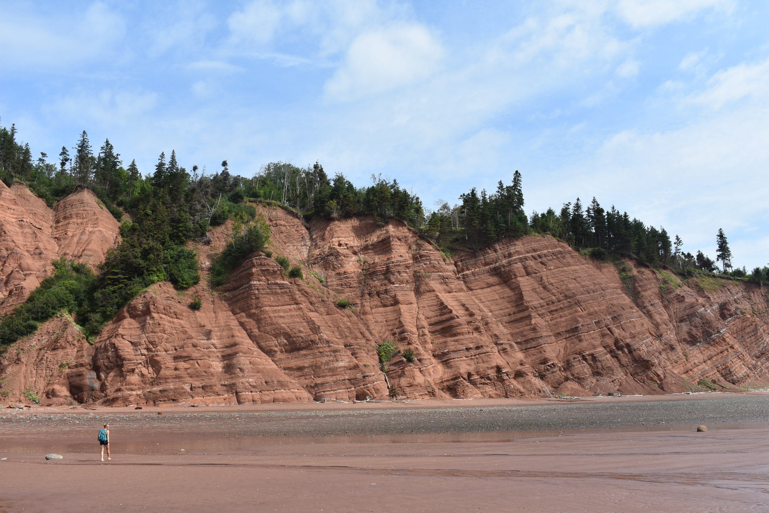 bay of fundy permaculture